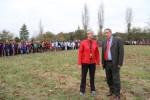 Cross d�partemental de l�UNSS de Haute-Garonne le 26 novembre 2014 � la base de loisirs La Ram�e � Tournefeuille